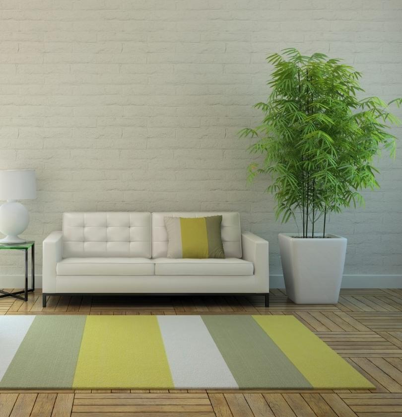 moderne woonkamer planten ~ lactate for ., Deco ideeën