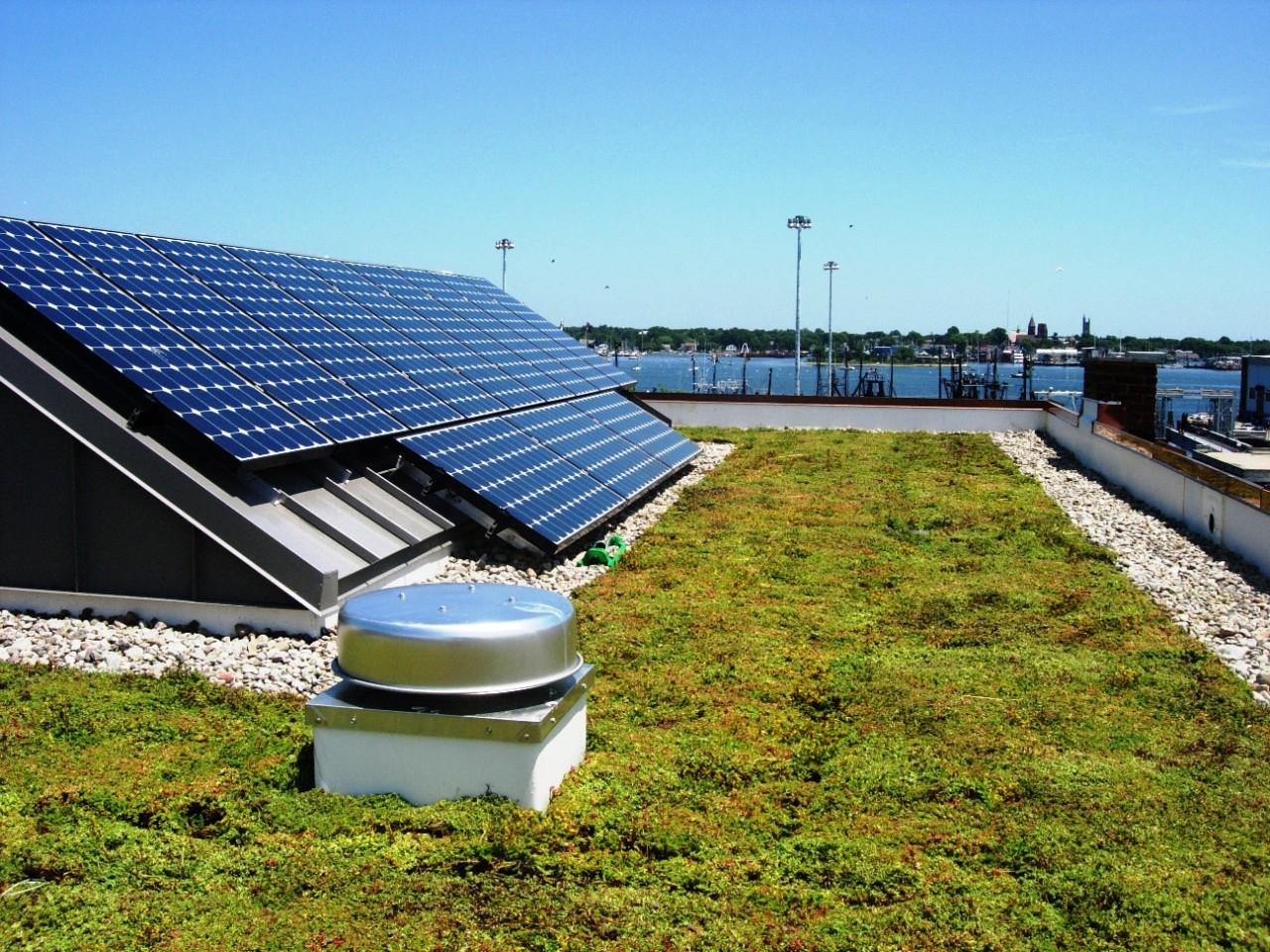 Zonnecollectoren op een groendak