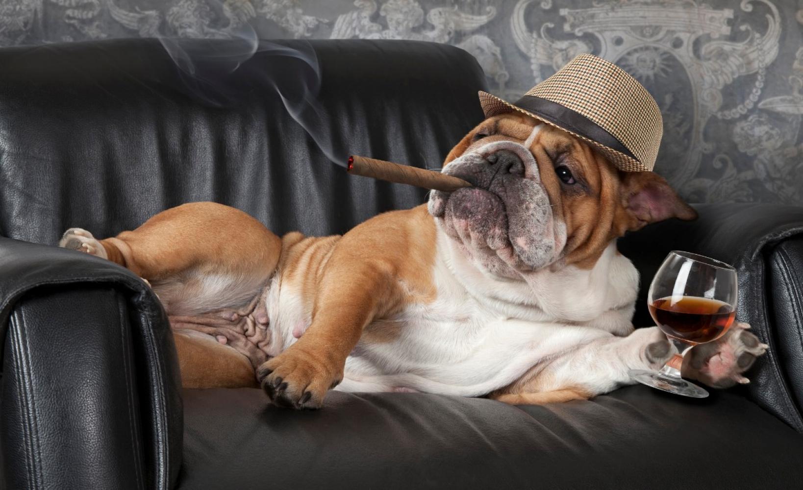 Langer zelfstandig thuis wonen sta vaker op uit uw luie for Luie stoel